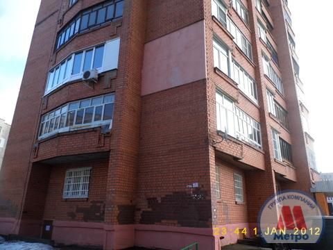 Квартира, ул. Калинина, д.33 к.2 - Фото 1