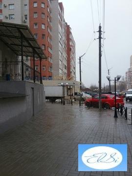 Продается помещение под любой вид деятельности, Московский район, ул.В - Фото 3