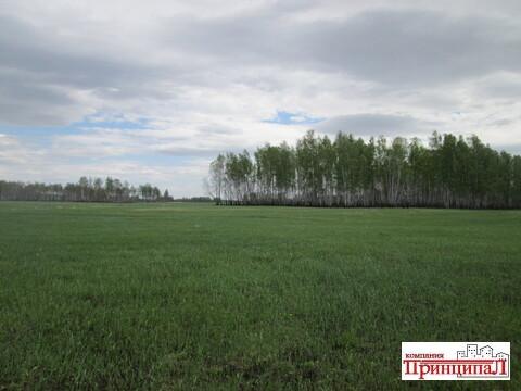 Земельный участок 9.4 гектар в экологически чистом районе - Фото 4