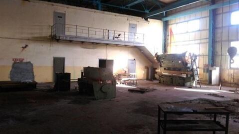 Сдам производственное помещение 1000 кв.м, м. Электросила - Фото 5