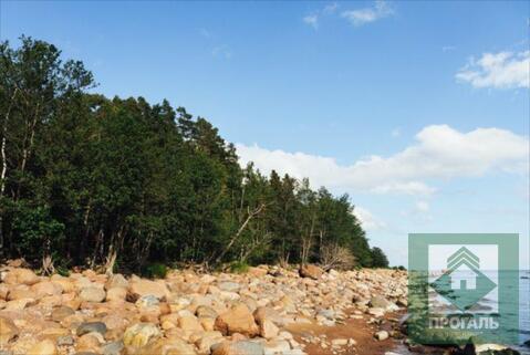 Продажа участка, Пески, Выборгский район - Фото 1