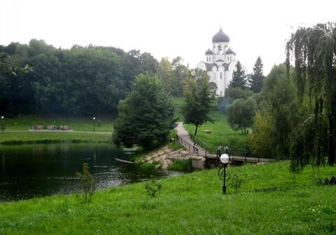 Однокомнатная квартира в п. Воскресенское (Новая Москва) - Фото 3
