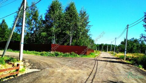 Ярославское ш. 50 км от МКАД, Жилкино, Участок 8 сот. - Фото 3