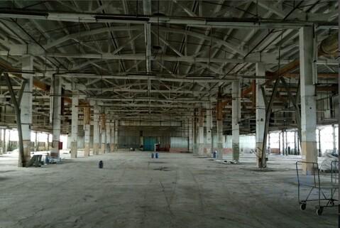 Предлагаем в аренду производственное помещение - Фото 4