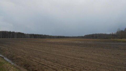Продаётся земельный участок 5 га в Московской области - Фото 1