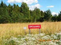 Хороший участок- лес , озеро, дороги, электричество - Фото 5
