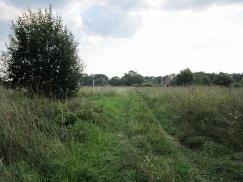 Земельный участок 27 соток в д. Пушкино - Фото 3