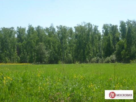 Продажа земельного участка 11,59 соток - Фото 2