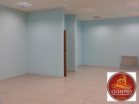 Торгово-офисное помещение 115 м2, по ул.Щорса, д.57. - Фото 5