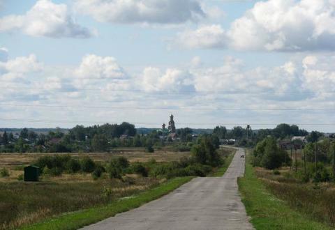 Продам землю рядом с озерами и хвойным лесом в с. Панино - Фото 1