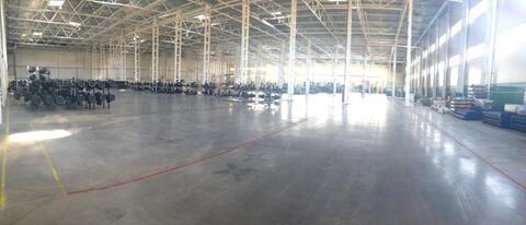 Сдам склад класса А 8286 кв.м. - Фото 1