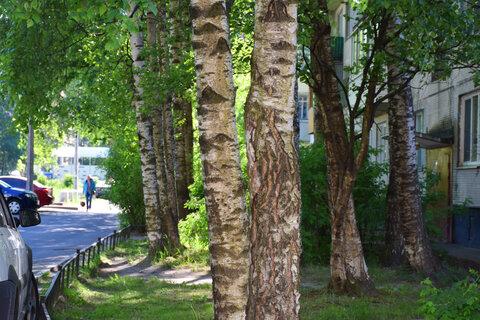 Продажа 2 к.кв в зеленом дворе в Калининском районе - Фото 1