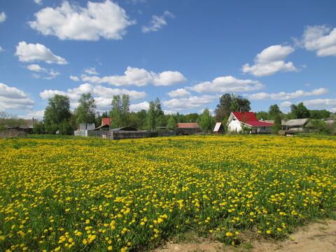 Земельный участок в д. Рай - Фото 3