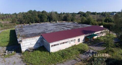 Продажа производственного помещения, Калининград, Советский пр-кт. - Фото 1