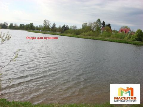 Шинкарский пруд - Фото 5