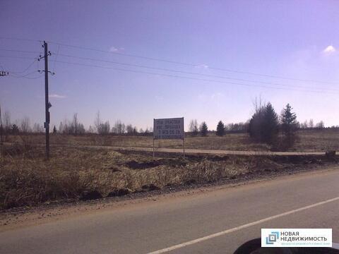 Продажа участок 4,6 га Кискелово - Фото 4
