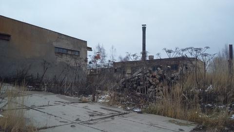 Производственная база 60 км по Минскому ш. п. Дорохово - Фото 4