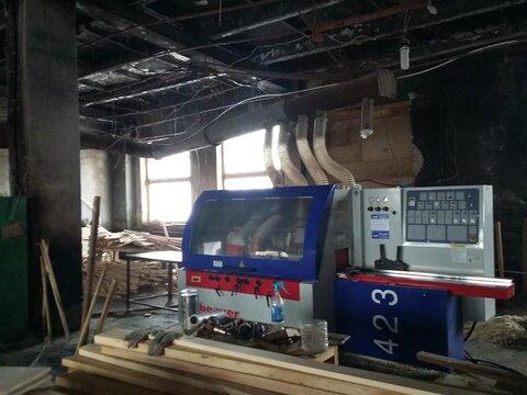 Мебельная фабрика.продажа.цеха, станки, сушильные камеры 4 Га - Фото 3