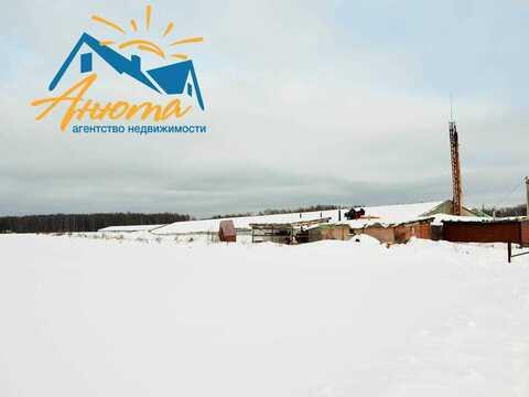 Продается тепличное хозяйство в деревне Митяево Боровского района Калу - Фото 3