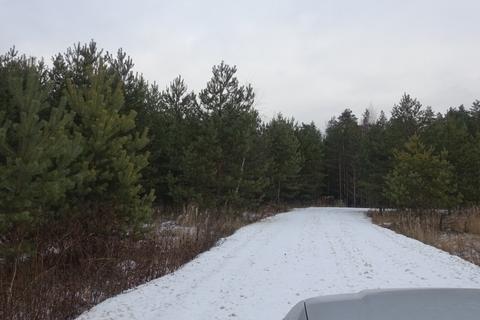 Отличный участок рядом с Лесом - Фото 1