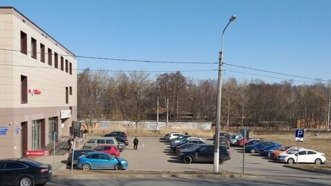 Объявление №48469880: Помещение в аренду. Ломоносов, Дворцовый пр-кт., 9,