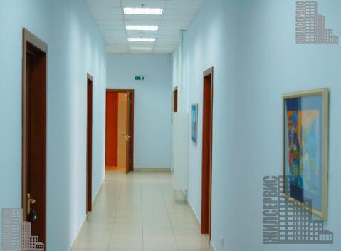 Офис 482м с отделкой - Фото 3