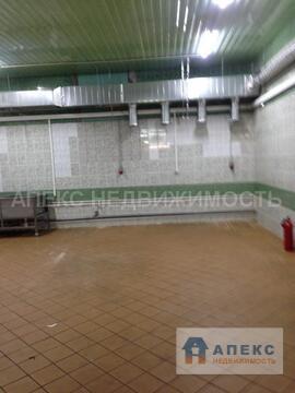 Аренда помещения пл. 330 м2 под производство, пищевое производство м. . - Фото 3