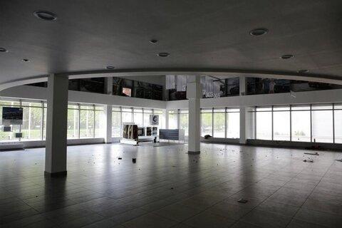 Продажа торгового помещения, м. Проспект Просвещения, Санкт-Петербург - Фото 3