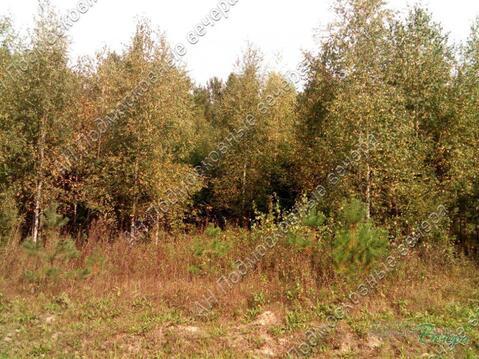 Симферопольское ш. 70 км от МКАД, Старые Кузьменки, Участок 30 сот. - Фото 1