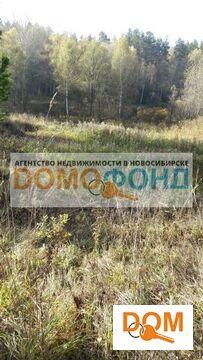 Продажа участка, Кубовая, Новосибирский район, Купеческая - Фото 4