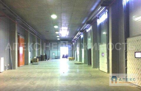 Продажа помещения пл. 8380 м2 под склад, офис и склад, холодильный . - Фото 4