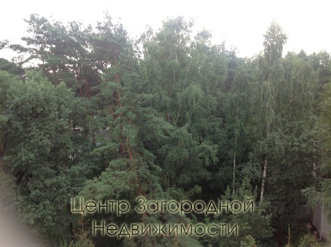 Четырехкомнатная Квартира Москва, шоссе Рублевское шоссе, д.61, ЗАО - . - Фото 3