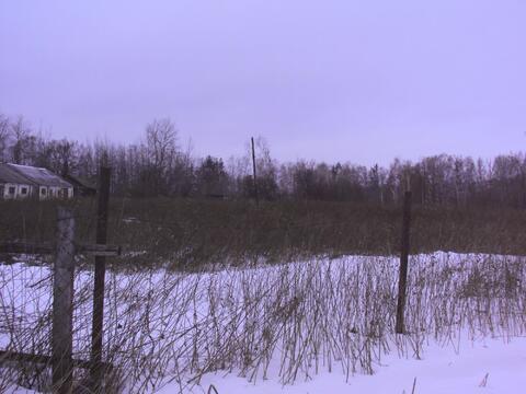 Продам земельный участок 2 гектара с постройками д.Шупоси - Фото 4