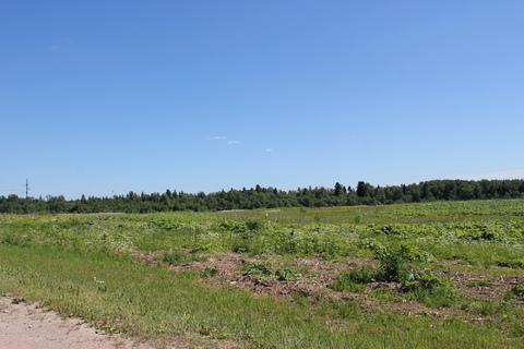 Пром-земля, первая линия Малое бетонное кольцо А-108, с.Белый Раст - Фото 3