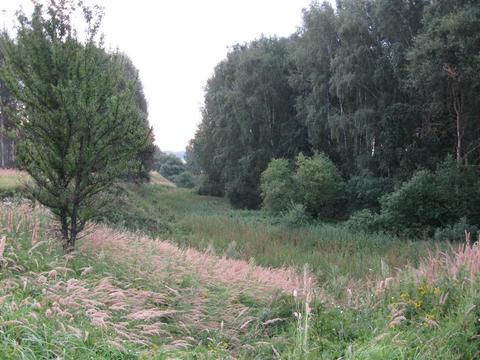 Продажа земельного участка 5,5 га сельхоз вблизи каскада озер - Фото 2