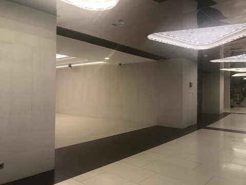 Сдается в аренду помещения в торговой галереи в МФК Башня Федерация - Фото 5