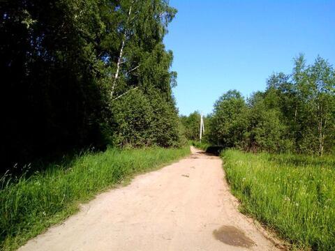 Лесной участок 6 Га (600 соток) на берегу озера. - Фото 1