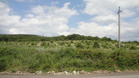 Участок 11 Га, лкх в горном Крыму под Севастополем - Фото 5