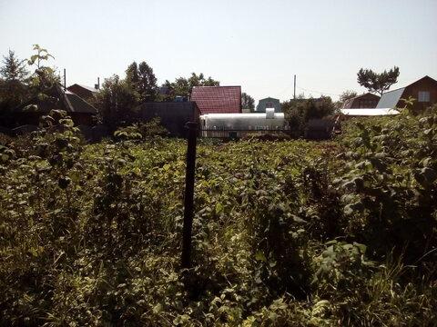 Продам пустой участок в СНТ Тихие зори, ухожен, Новосибирск Краснообск - Фото 3