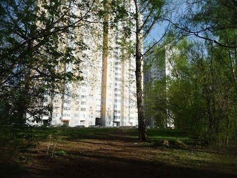 Продажа квартиры, м. Свиблово, Тенистый пр. - Фото 3