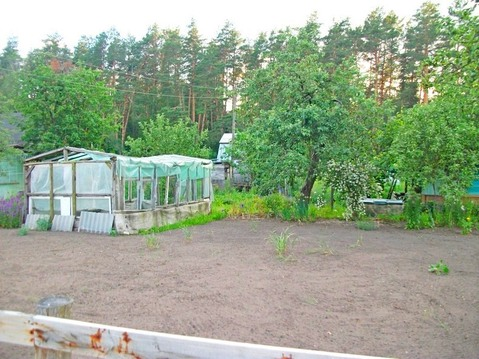 Продаю дачу ( Конный парк) - Фото 2