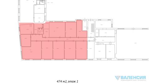 Аренда торгового помещения 474м2, 1эт, Аптекарьская наб, д.12 - Фото 4