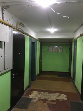 Предлагаю 3-х комнатную квартиру в Новых Химках около парка - Фото 5