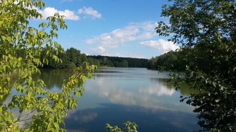 Продам участок 12 соток в д. Курганье рядом с рекой Злодейка - Фото 3
