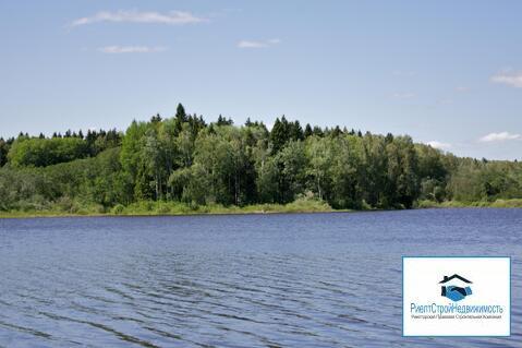 Лесной участок на первой линии водохранилища - Фото 1