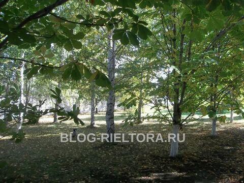 Продажа дома, Саратов, Село Усть-Курдюм - Фото 3
