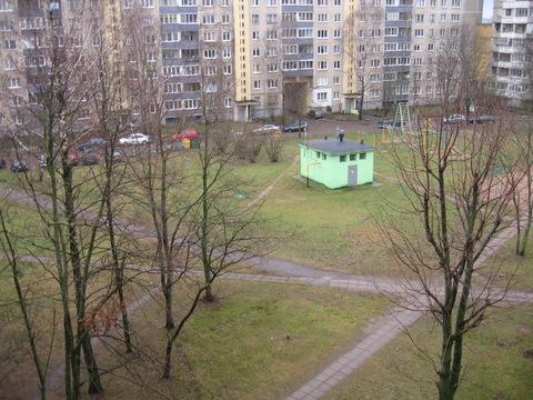 3 комнатная квартира в Зеленом луге с большими комнатами - Фото 3