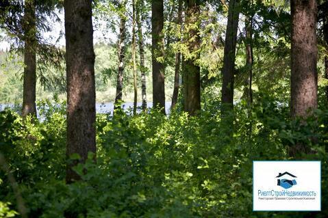 Лесной участок на первой линии водохранилища - Фото 3