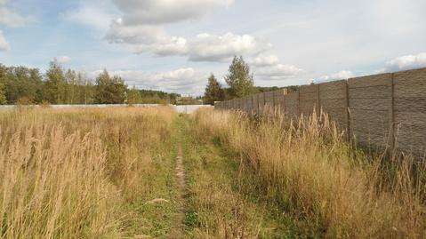 Земельный участок 5,67 Га рядом с деревней Сорокино - Фото 4
