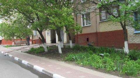 Двухкомнатная на Спортивной, Купить квартиру в Белгороде по недорогой цене, ID объекта - 321437561 - Фото 1